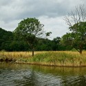 rapotamo river