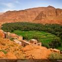 maroko południowe oaza